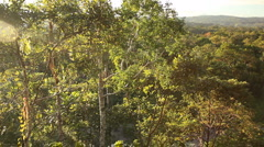 View over lowland tropical rainforest, Ecuador - stock footage