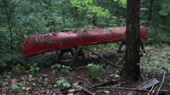 Old red canoe. Rainy woods. Stock Footage