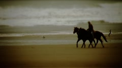 Morro Rock-horses1 Stock Footage