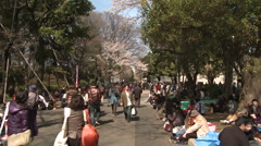 Cherry Blossom inTokyo Ueno park people walking in park - stock footage