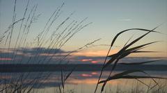 Sunset lake&grass mid1 Stock Footage
