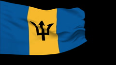 Flag of Barbados Stock Footage