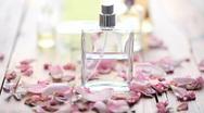 Rose petals blown away Stock Footage