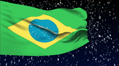 Flag of Brazil Stock Footage