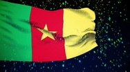 Flag of Cameroon Stock Footage
