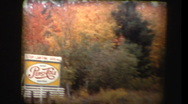 Driving past autumn leaves changing colors Stock Footage