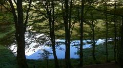 Sevarno Lake in the national park Biogradska Gora on the mountain, Montenegro Stock Footage