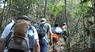 Trekking with group tourists Stock Footage
