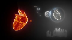 Human heart with pulse trace - stock footage