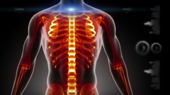 Human chest medical screen interface in loop Stock Footage