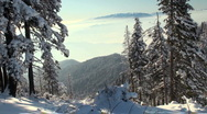 Stock Video Footage of winter landscape with forests and snowy mountains