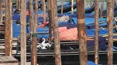 Gondolas and Mooring Sticks Stock Footage