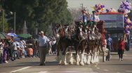 Stock Video Footage of Horse Carriage - Martin Luther King Parade - Los Angeles 2011