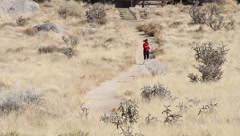 Single female jogger Stock Footage