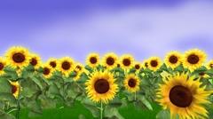 Sunflower field animation Stock Footage