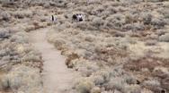 Stock Video Footage of Hiking through desert