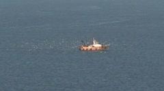 Birds Following Fishing Trawler Stock Footage