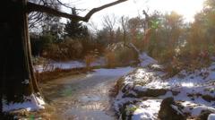 Winter Beauty Scene 19 Stock Footage