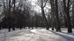 Winter Beauty Scene 20 Stock Footage