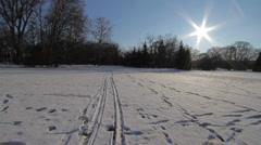 Winter Beauty Scene 23 pans Stock Footage