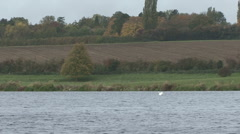 Scenic shot, lake and ploughed field. Stock Footage