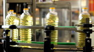 Stock Video Footage of Sunflower oil in the bottle