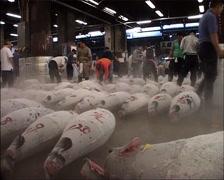 Tsukiji Fish Market pre-Tuna Auction, Tokyo GFSD - stock footage