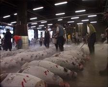 Tsukiji Fish Market after Tuna Auction, Tokyo GFSD - stock footage
