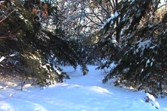 Snow covered passage Stock Footage