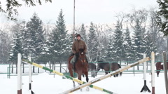 Horseback riding horses playing in the snow stallions galope equestrian26 Stock Footage
