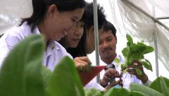 Technicians Examining Plants - stock footage