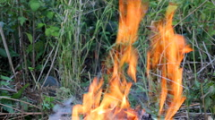 close-up view on bonfire flame - stock footage