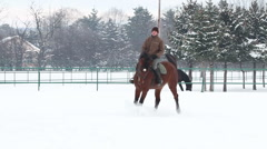Horseback riding horses playing in the snow stallions galope equestrian27 Stock Footage