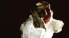 Alien embrion on ice - dark Stock Footage