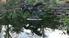 Gold Fish Pond Botanical Gardens Fort Worth Texas Stock Footage