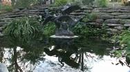Gold Fish Pond Botanical Gardens Fort Worth Texas Stock Footage