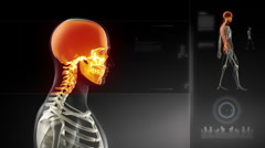 Walking man  head scan with visible brain - stock footage