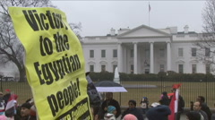 Egyptians protest in Washington, D.C.   Stock Footage