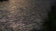 Water waves dark river background reflections3 Stock Footage