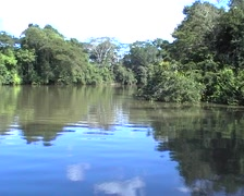 Boat trip on Rio Frio (Cold River) Stock Footage