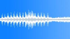 Woodpecker drumming in rainforest Sound Effect