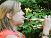 Stock Video Footage of Trumpet. Stop-motion effect. SD.