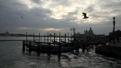 Stock Video Footage of Winter Sunset in Venice 2