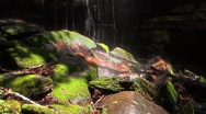 Stock Video Footage of Water falling on mossy stones