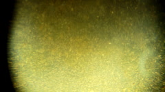 Golden Abstract Video Texture  Stock Footage