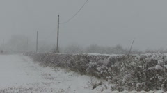 Hedgerow in falling snow. Stock Footage
