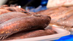Seafood in Ueno Market Stock Footage