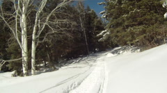 Mountain winter trail fast motion P HD 05 Stock Footage