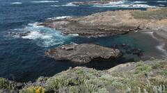Sea Lion Cove (closeup), Point Lobos, Californiap Stock Footage