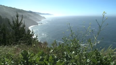 California Coastal View Stock Footage
